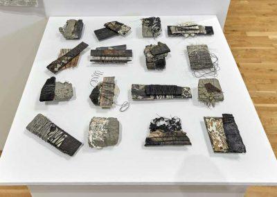 Ann Goddard | Assemblages