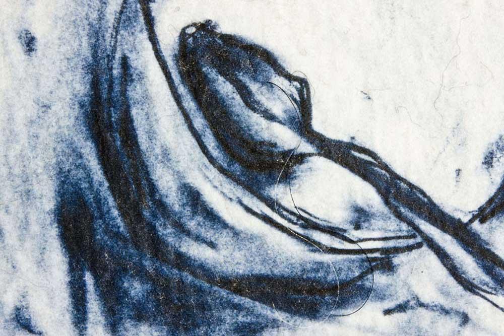 SUGAR AND SPICE (detail) | Print and hand made felt; 40cm x 30cm. Photo: David Ramkalawon.