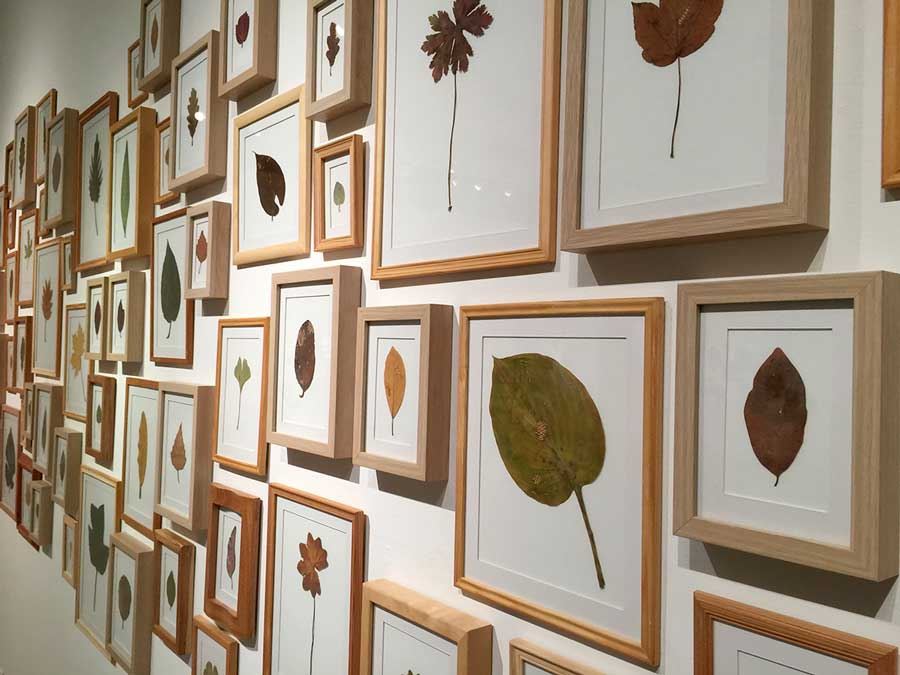 MENDED LEAVES | Framed dried mended leaves with yarn