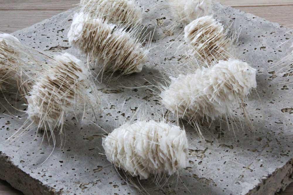 HOSTILE LANDSCAPE (Detail) | Materials: Felted cotton fibres, bristles, wire, concrete | Size: 1 of 9 units, W40 x H12 x D40 cm | <br />Ann Goddard